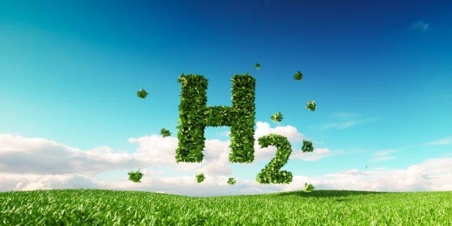 The Hydrogen Wars